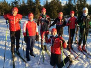 15 skiosju